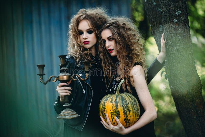 Duas mulheres do vintage como bruxas imagem de stock royalty free