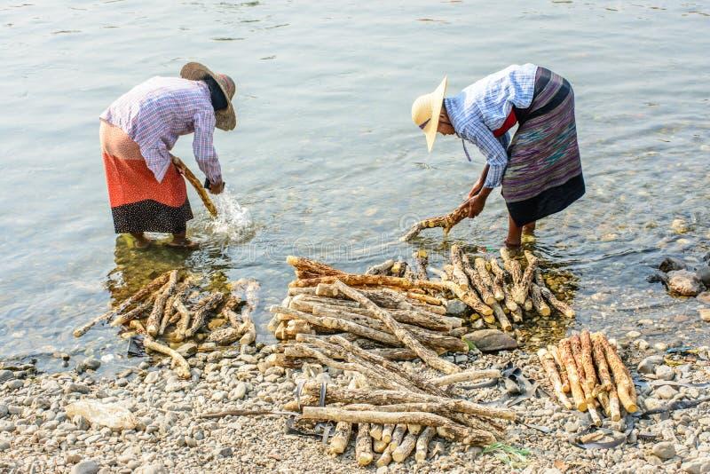 Duas mulheres estão lavando a madeira do thanakha no rio de Mann fotografia de stock
