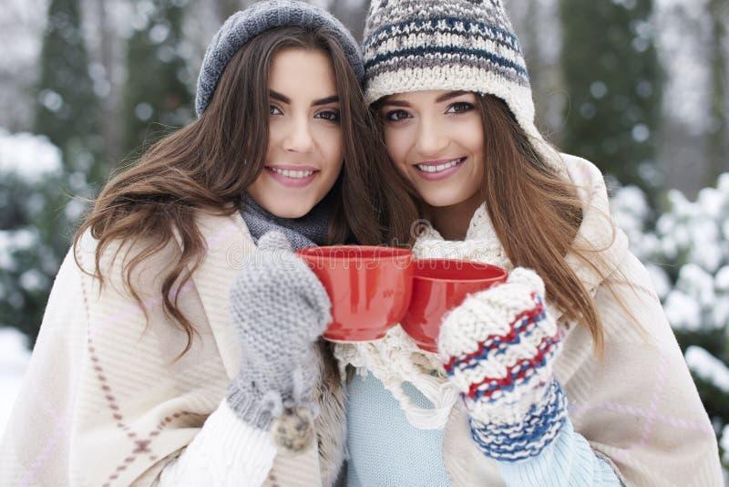 Duas mulheres na roupa do inverno com chocolate quente imagem de stock royalty free