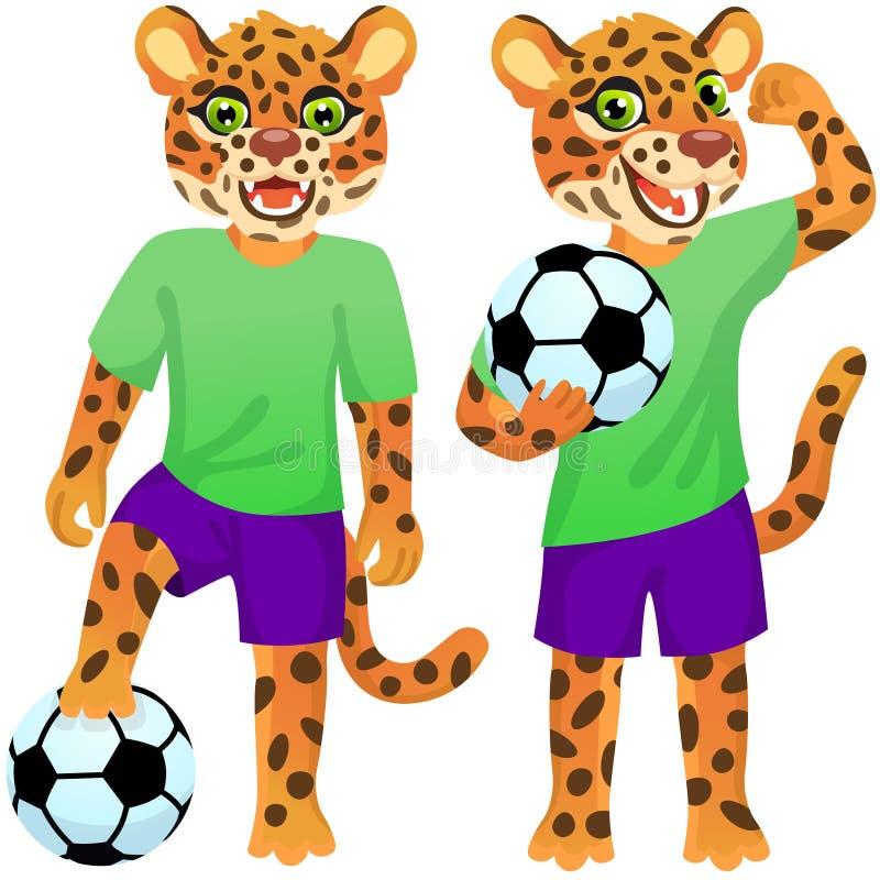 Duas onças em pé como os jogadores de futebol de uniforme com a bola de futebol ilustração stock