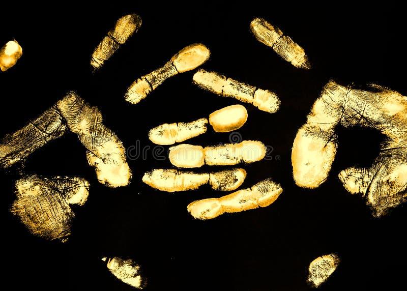 Duas palmas douradas imagens de stock royalty free