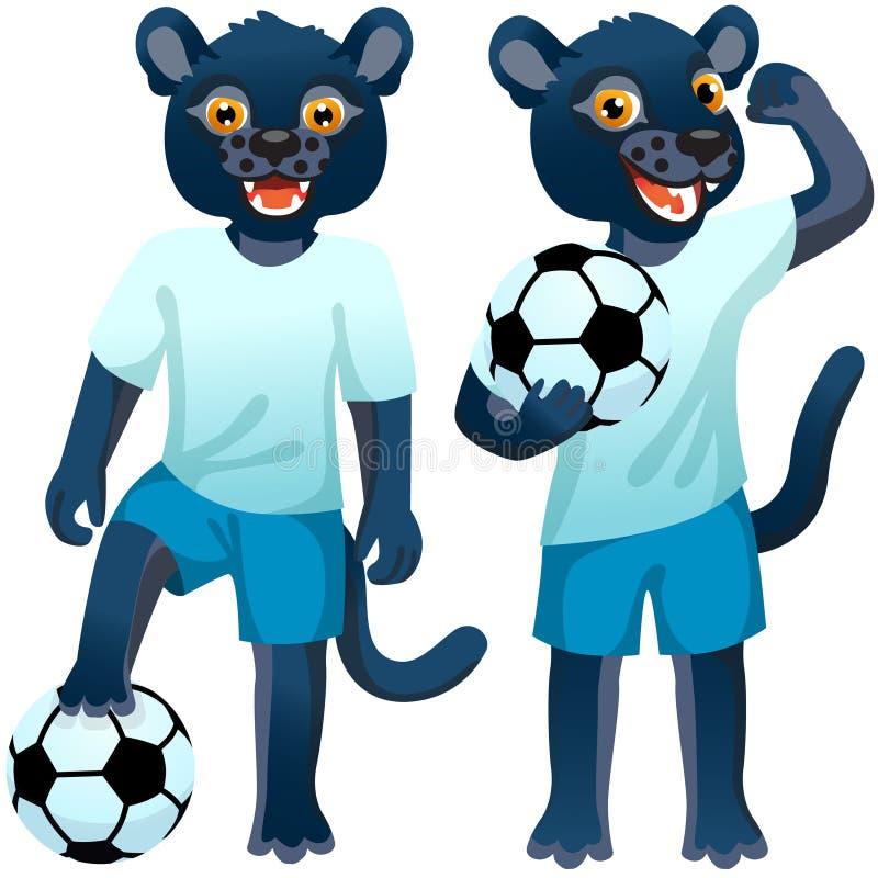 Duas panteras de pé como os jogadores de futebol de uniforme com a bola de futebol ilustração royalty free