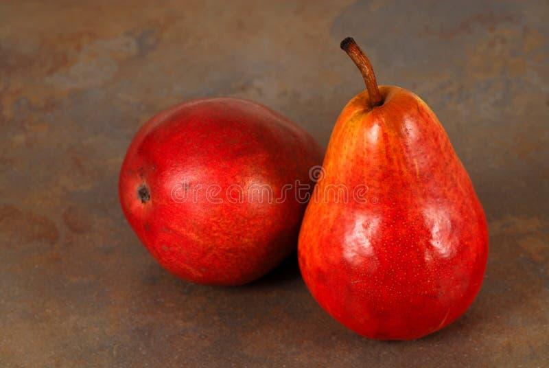 Duas peras de bartlett vermelhas orgânicas maduras frescas fotos de stock