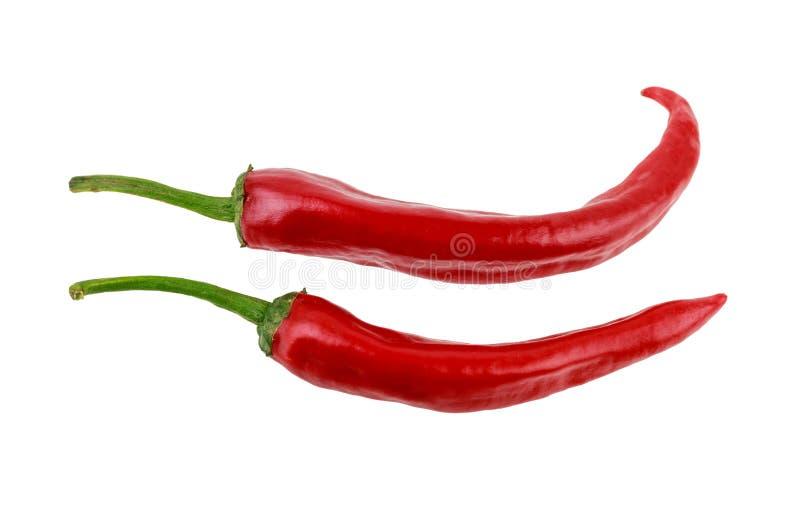 Duas pimentas vermelhas quentes do jalapeno no fundo branco imagem de stock