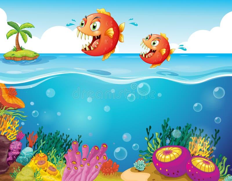 Duas piranhas assustadores no mar ilustração do vetor