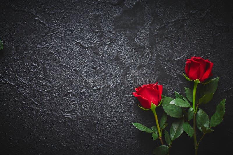 Duas rosas vermelhas em um fundo de pedra escuro, preto Lugar para o texto fotografia de stock