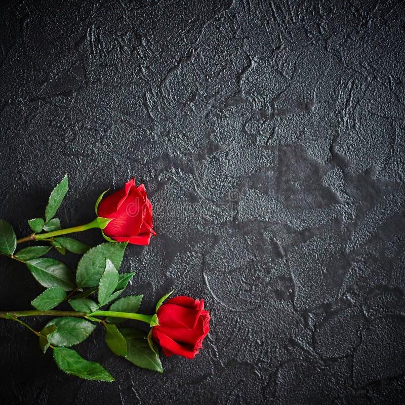 Duas rosas vermelhas em um fundo de pedra escuro, preto Lugar para o texto fotos de stock