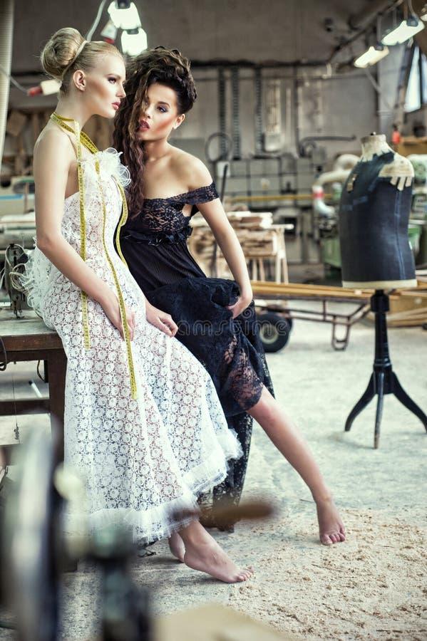 Duas senhoras impressionantes em um pose sensual foto de stock royalty free