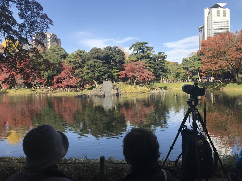 Duas senhoras japonesas eram de assento e de tomada a imagem do bordo vermelho maravilhoso fotos de stock royalty free