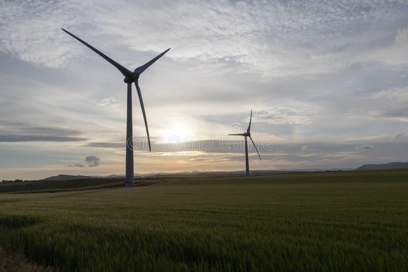 Duas silhuetas da turbina eólica em um campo no por do sol imagem de stock