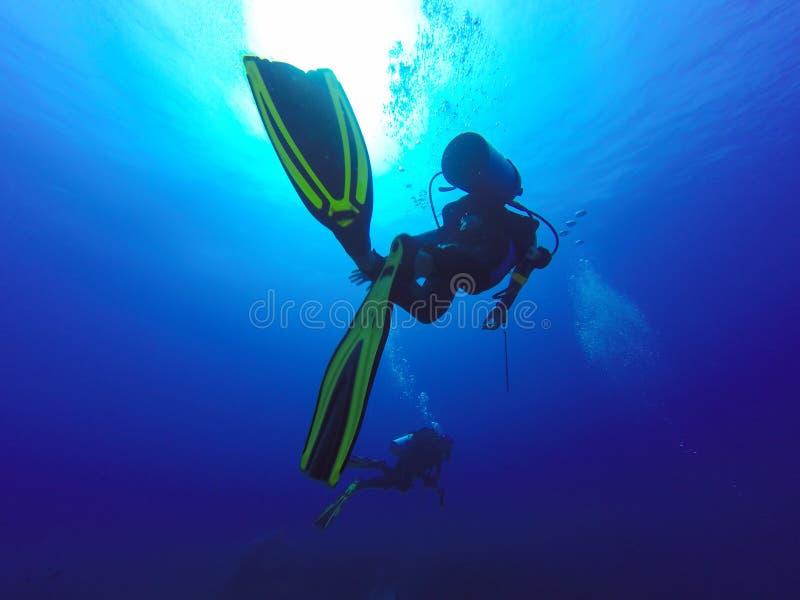 Duas silhuetas dos mergulhadores de mergulhador que nadam sobre o recife de corais vivo completamente de anêmonas de mar dos peix fotografia de stock royalty free