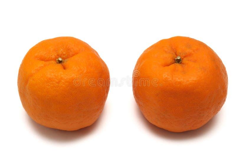 Duas tanjerinas imagem de stock