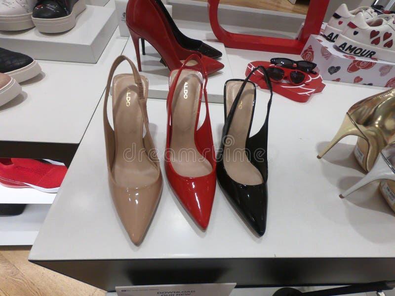 Dubaï la haute élégante et classique en février 2019 - guérit des chaussures montrées en vente chez Aldo Shop dans le mail de Dub image stock