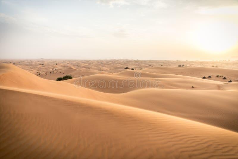Dubai ökenlandskap royaltyfria foton