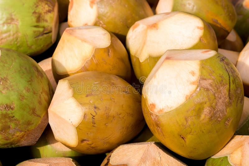 Coconut exotic fruit. Dubai is a city and emirate in the United Arab Emirates known for luxury shopping, ultramodern architecture and a lively nightlife scene stock image