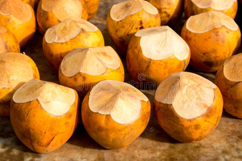 Coconut exotic fruit. Dubai is a city and emirate in the United Arab Emirates known for luxury shopping, ultramodern architecture and a lively nightlife scene royalty free stock image