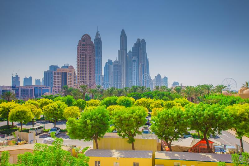Dubai cityscape. Green trees on Dubai downtown background. royalty free stock images