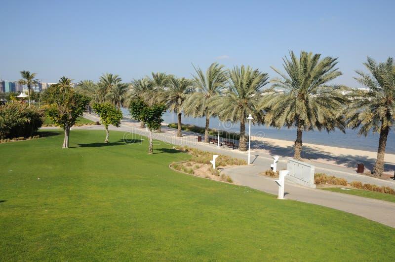 Dubai Creek Park stock image