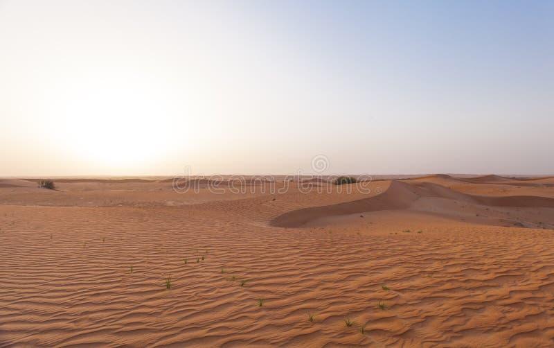 Dubai desert sand dunes royalty free stock images