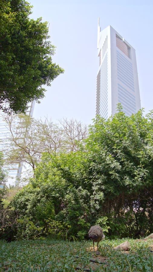 DUBAI, EMIRATOS ÁRABES UNIDOS - 31 de março de 2014: As torres gêmeas dos emirados projetaram pelos consultantes do grupo de NORR foto de stock