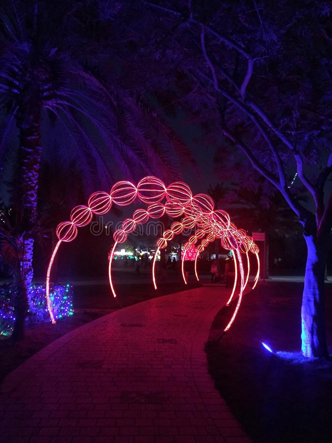 Dubai Glow Park Glowing Ants Stock Photo Image Of