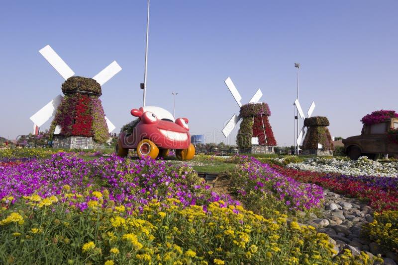 Dubai mirakelträdgård med bilskärm arkivbilder
