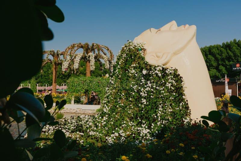 DUBAI, UAE - 5 de janeiro de 2019: Jardim do milagre de Dubai com as mais de 45 milhão flores em um dia ensolarado, Emiratos Árab fotos de stock royalty free