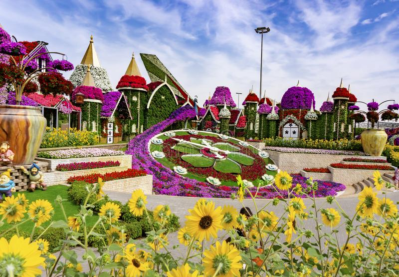 Dubai, UAE/11 06 2018: helle Blumenuhr im Wunder-Garten in Dubai stockbilder