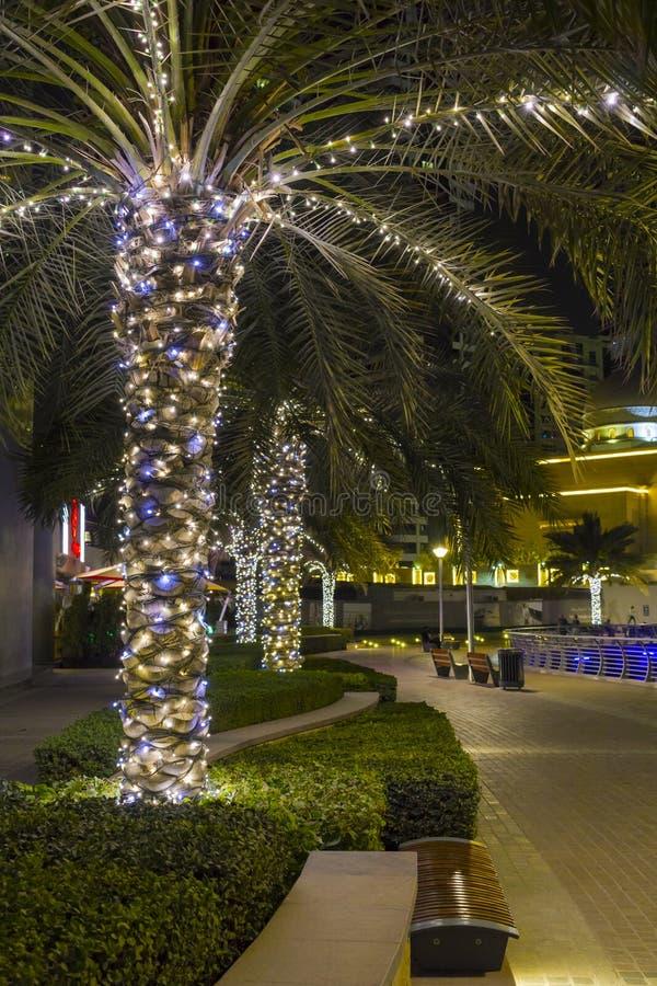 DUBAI, UAE - March 8th 2019:Dubai Marina palms illuminated at night stock photos