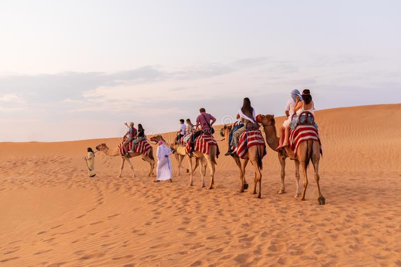 DUBAI, UAE - November 09, 2018: Camel caravan with tourists going through sand dunes in Dubai desert stock photos