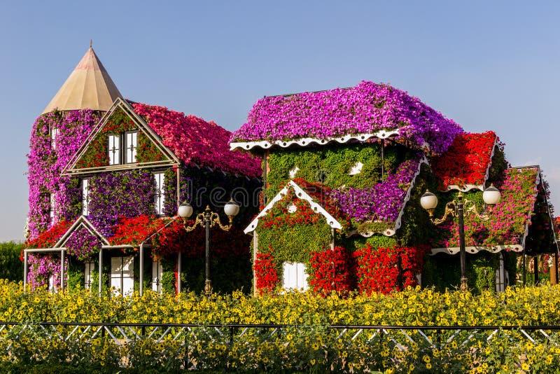 Dubai UAE November 17 2017 - mirakelträdgård i Dubai UAE arkivbild