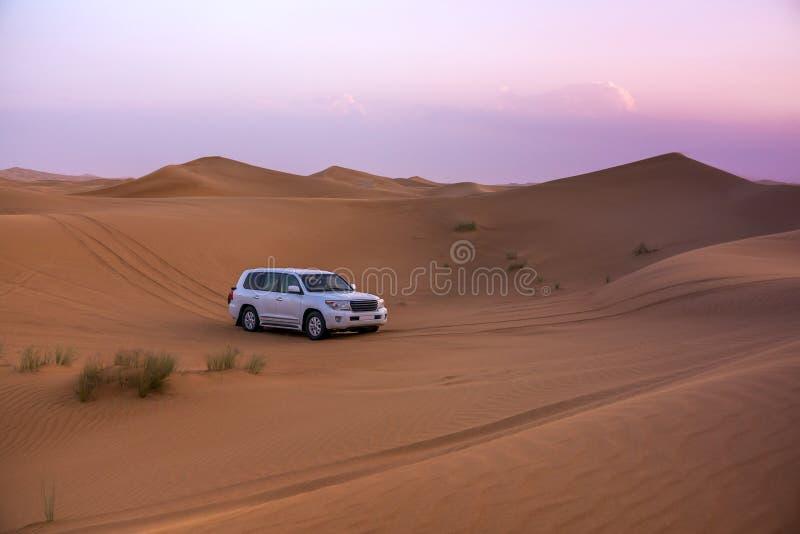 Dubaj pustyni safari zdjęcia royalty free
