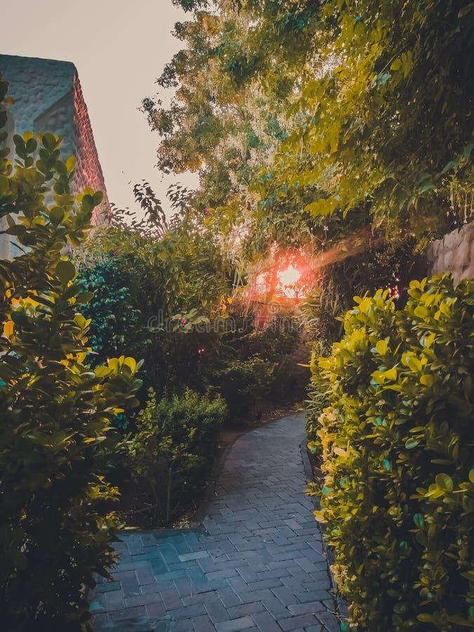 Dubaj zieleni widok obrazy stock