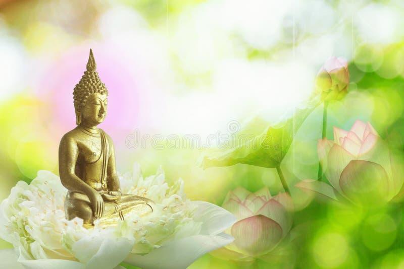 dubbel exponering av lotusblommablomman eller näckrons och framsidan av den buddha statyn royaltyfri foto