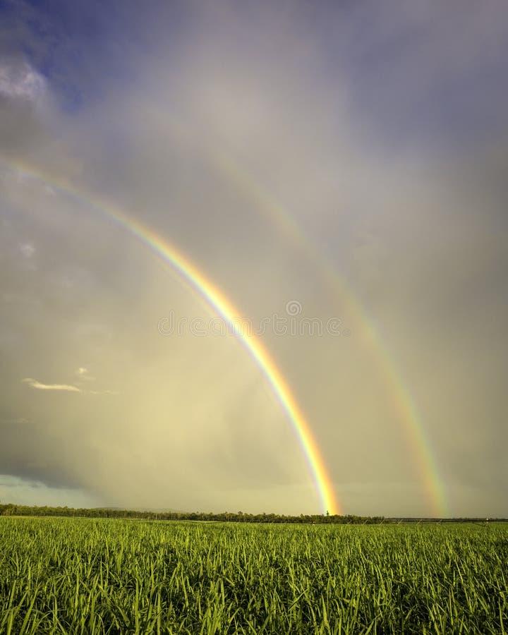 Dubbel regnbåge över sockerrottingen royaltyfri fotografi