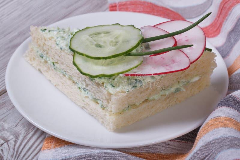 Dubbel smörgås med gurkan, rädisan och ost royaltyfri fotografi