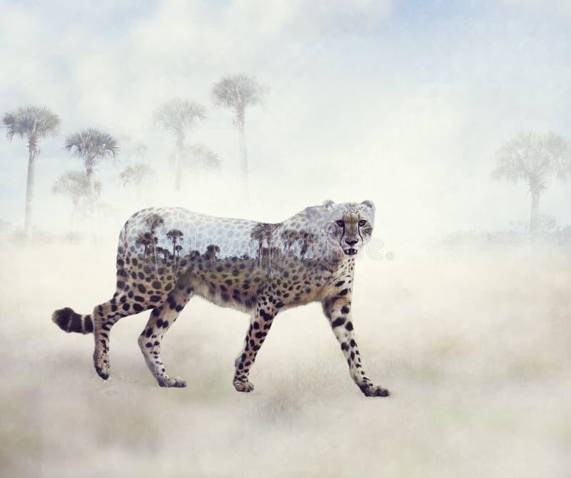 Dubbele blootstelling van het lopen van jachtluipaard en bomen vector illustratie