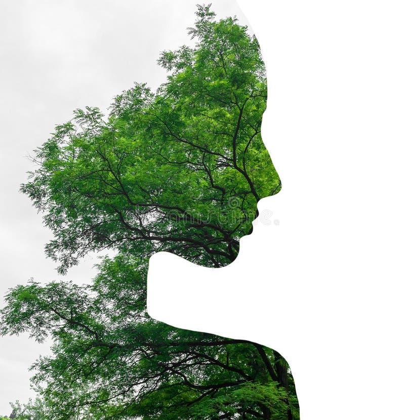 Dubbele blootstelling van jong mooi meisje onder de bladeren en de bomen Silhouet op wit royalty-vrije stock foto's