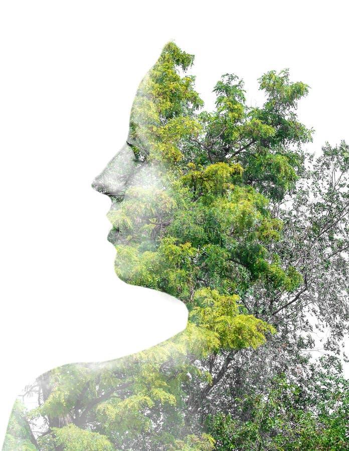 Dubbele blootstelling van jong mooi meisje onder de bladeren en de bomen silhouet op wit wordt geïsoleerd dat stock foto's