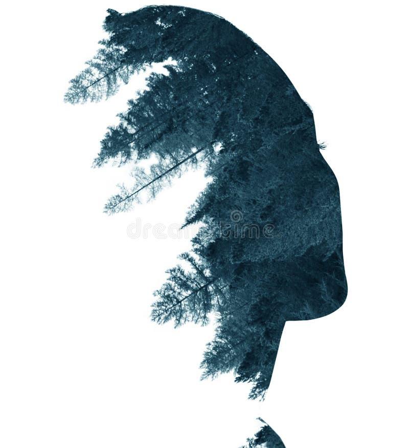 Dubbele blootstelling van vrouw in profiel en bos stock afbeeldingen