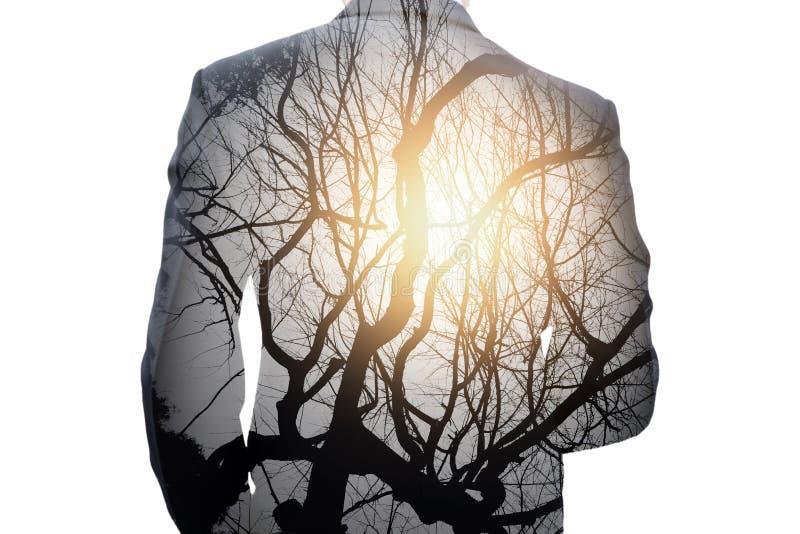 Dubbele blootstelling van zakenman en boom stock fotografie