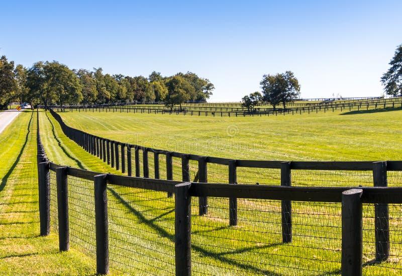 Dubbele omheining bij paardlandbouwbedrijf royalty-vrije stock foto's