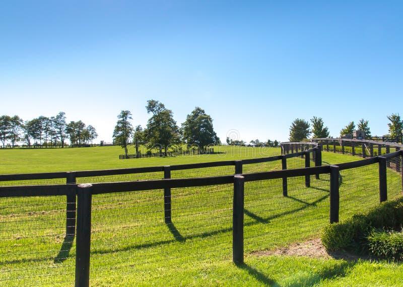 Dubbele omheining bij paardlandbouwbedrijf stock fotografie