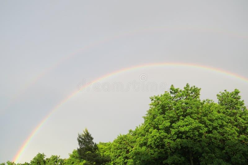 Dubbele regenboog over groene bomen stock afbeeldingen
