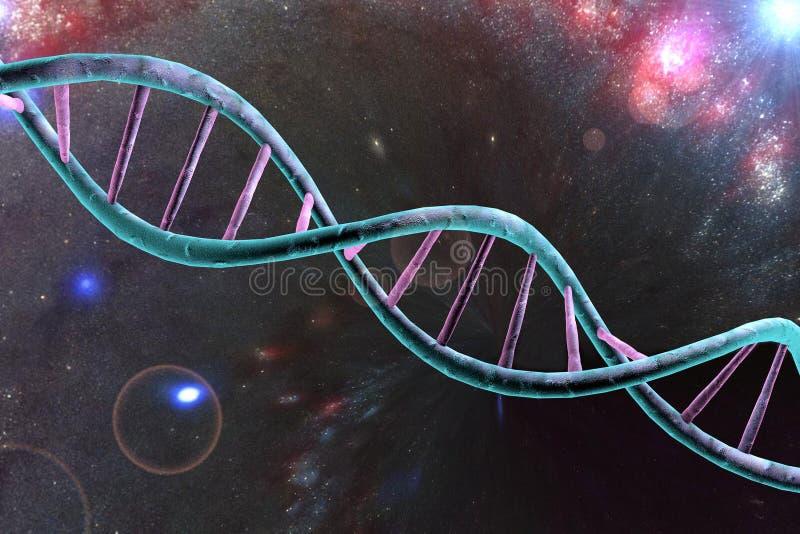Dubbele schroef van DNA vector illustratie