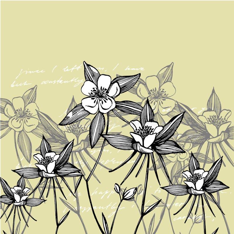 Dubbla aklejablommor Samling av hand drog blommor och v?xter bostonian Upps?ttning bakgrundskortet blommar reng?ringsduk f?r tapp arkivfoto