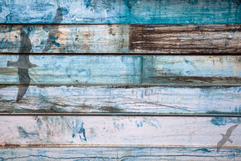Dubbla Exposured Seagulls med målad gammal metallbakgrund ser som trä royaltyfria bilder
