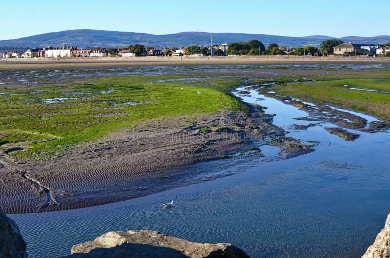 Dublin Bay in Sandymount Irishtown Nature Park. Photo stock photography