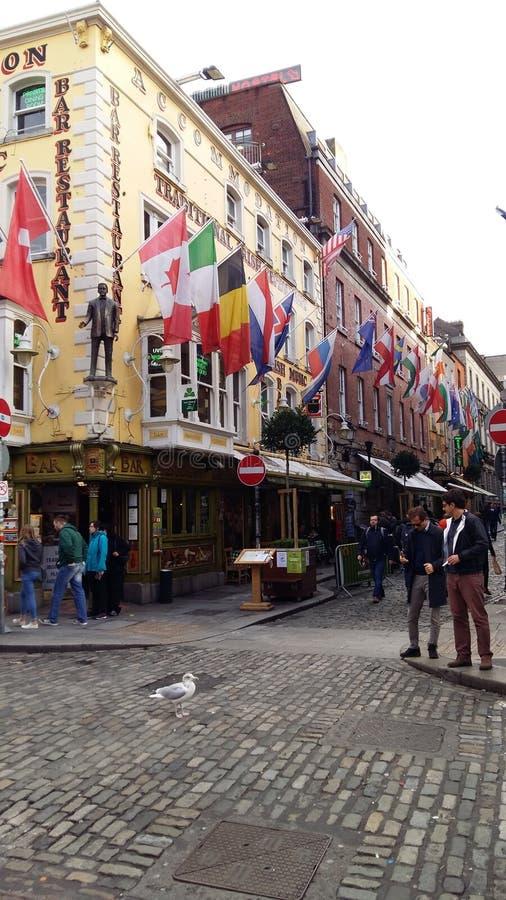 Dublin centralt område, nästan traditionell tempelstång royaltyfria bilder
