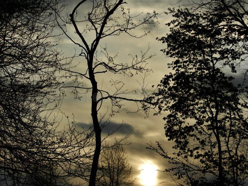 Dublin wschód słońca zdjęcia stock